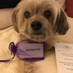 Looking Back at the You Matter Marathon
